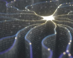 What is your company's approach to artificial intelligence (AI) use?